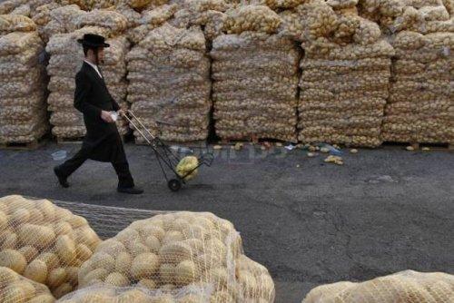 Imagem do dia: Véspera de Pessach em Jerusalém: Batatas, Batatas, Batatas e Mais Batatas...
